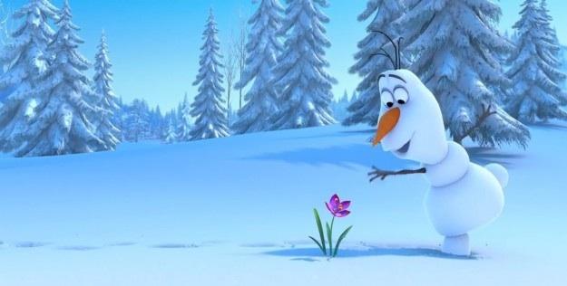 Olaf, irresistibile pupazzo di neve parlante, scopre le meraviglie della natura.