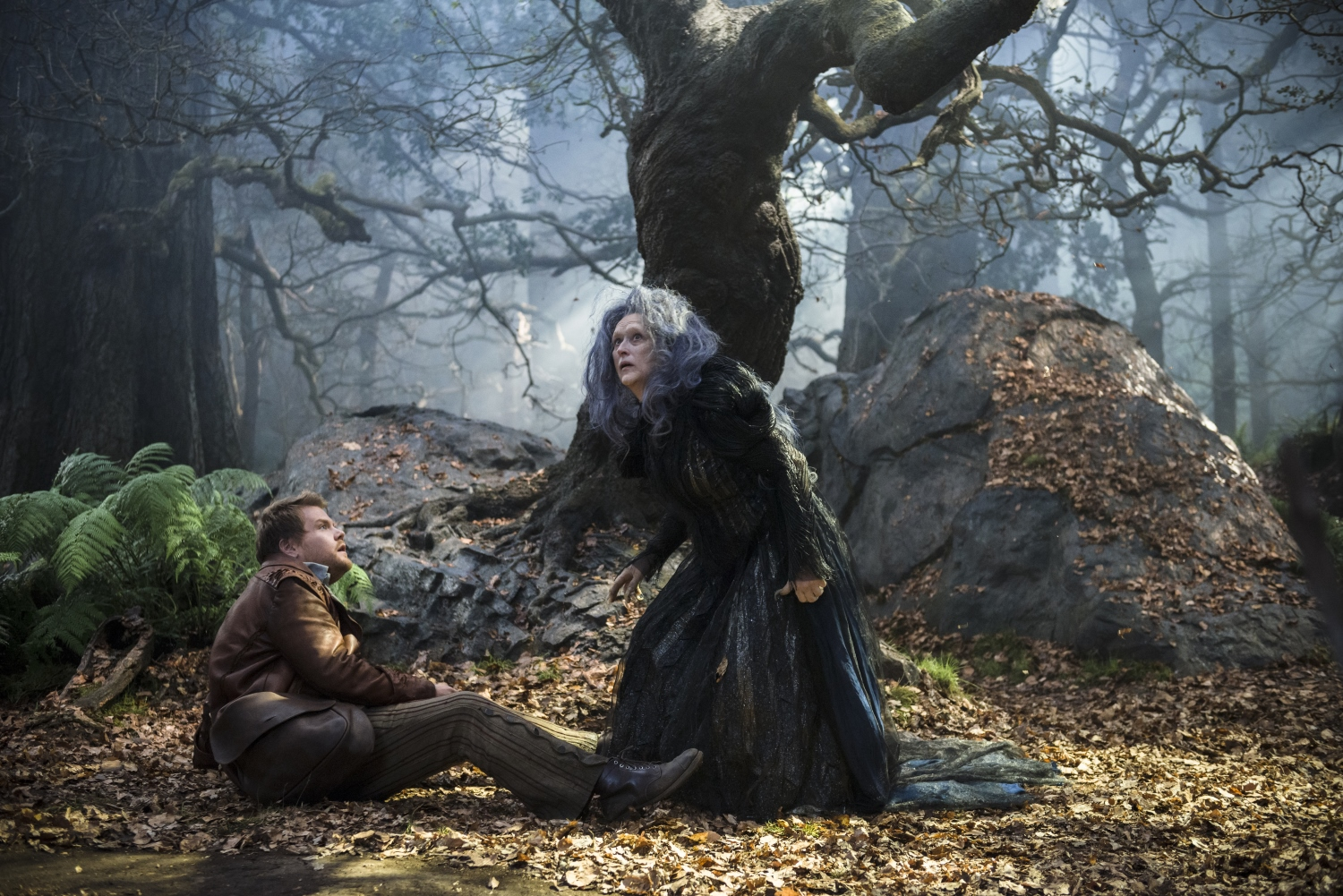 into the woods immagine 6
