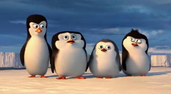 pinguini immagine 1